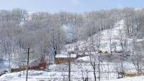 老家●雪2.21拍于河南卢氏